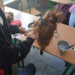 Zdjęcie nr 7 z kursu fryzjerskiego w ramach projektu Zawodowa współpraca 3